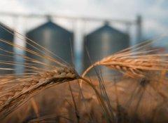 蚂蚁金服和拜耳将联合开发农业区块