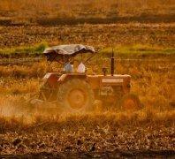 农业区块链5种应用层面和2个实际案例