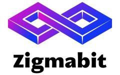 Zigmabit推出革命性挖矿芯片