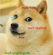什么是狗狗币(多吉币)?狗狗币初学者指南