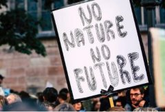 TRON创始人孙晨宇承诺向气候活动家Greta Thunberg捐款100万美元