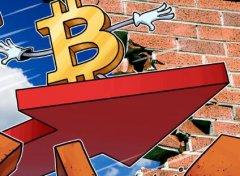 "BitPay高管:2020年""黑天鹅""将助力比特币突破2万美元"