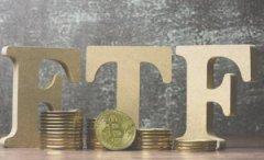 VanEck首席执行官:比特币ETF不会很快获得批准