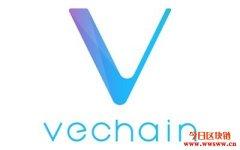 唯链推出网上直播的区块链网络研讨会VeChain BootCamp