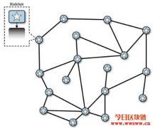 什么是区块链分叉? 什么又是硬分叉/软分叉?