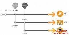 BTC、BCH、BSV差别比较,5分钟了解为什么有这么多种比特币