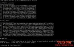 开发与测试Dapp免装节点