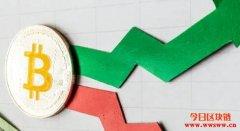 为何比特币的价格起伏不定?