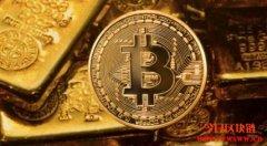 比特币是数字黄金还是现代版郁金香泡沫?