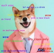 认识狗狗币Dogecoin