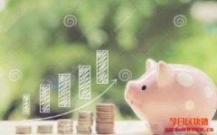 适合币圈新手的投资选择有什么?