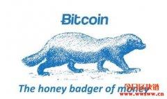 Badger币:2021年值得留意的潜力币种
