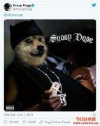 Snoop Dogg也喊盘,狗狗币告诉你什么是