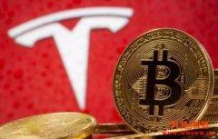 比特币与Tesla股价关系