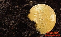 谈Bitcoin不环保以外的罪名