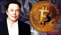 Elon Musk的比特币投资策略