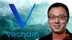 详细解读唯链Vechain及介绍原生代币VET/VTHO有哪些用途和价值?