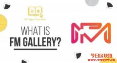 FM Gallery(FMG):艺术碎片与盲盒创新元素的 NFT 艺术