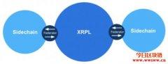 Ripple技术长公布联邦侧链愿景,为生态系统引进智能