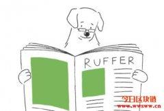 Ruffer投资总监透露:狗狗币热潮是公司出售比特币的