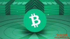 什么是比特币现金(BCH)?