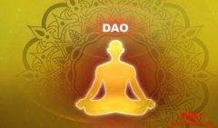 分布式自治组织(DAO)简介