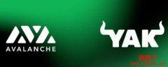 Avalanche Farming 6大步骤新手教学,收息可高达年利率94%