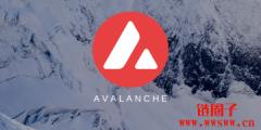 激励 AVAX 创新高!公链新星 Avalanche 销售代币筹资 2.3 亿美元